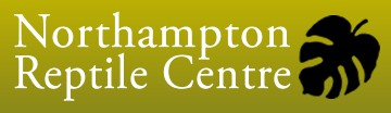 Business Coaching Northampton Reptile Centre